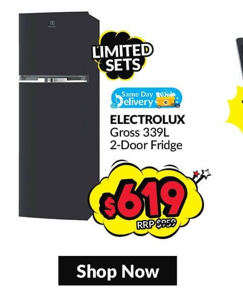 Electrolux 2-door fridge